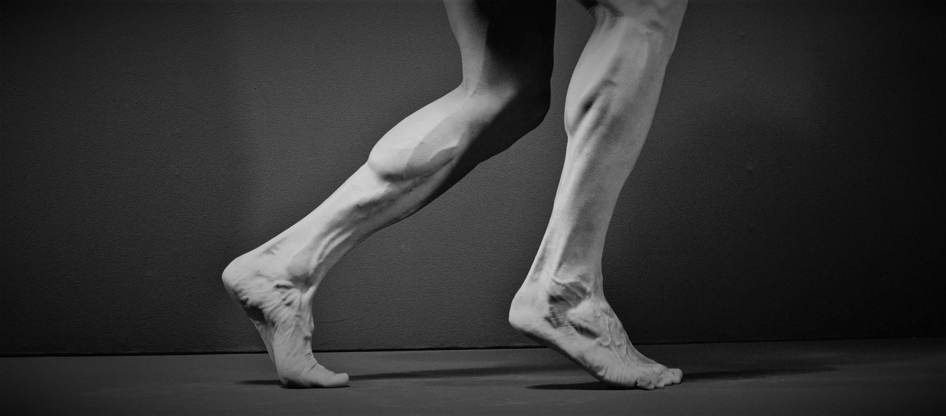 lower leg 2